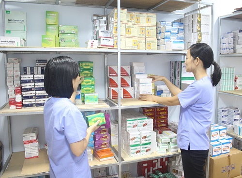 Dược sĩ hướng dẫn đồng nghiệp các loại thuốc